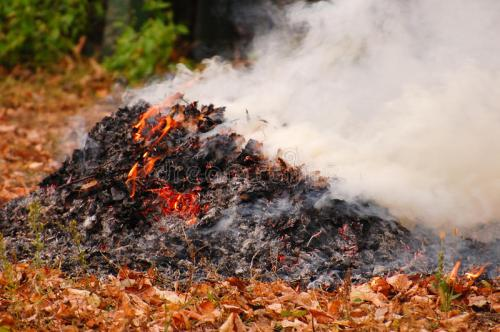 dry-leaves-burning-autumn-34197161